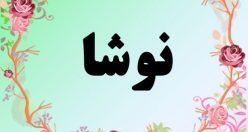 معنی اسم نوشا – معنی نوشا – نام زیبای دخترانه فارسی