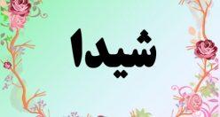 معنی اسم شیدا – معنی شیدا – نام زیبای دخترانه فارسی