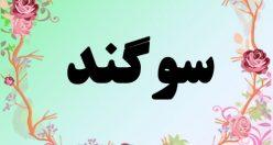 معنی اسم سوگند – معنی سوگند – نام زیبای دخترانه فارسی
