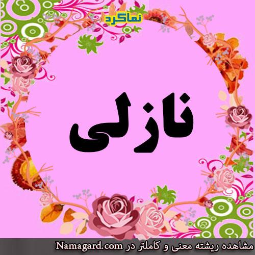 معنی اسم نازلی – معنی نازلی – نام زیبای دخترانه ترکی
