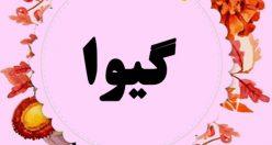 معنی اسم گیوا – معنی گیوان – نام زیبای دخترانه ترکی