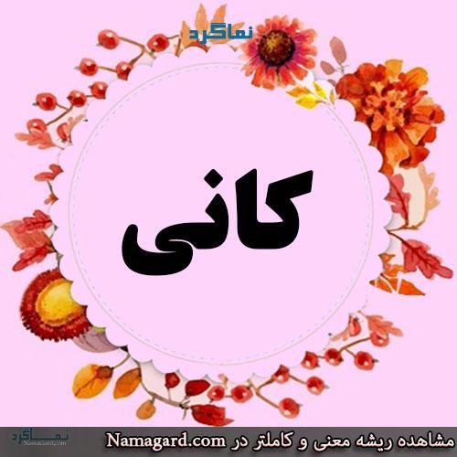 معنی اسم کانی – معنی کانیا – نام زیبای دخترانه فارسی