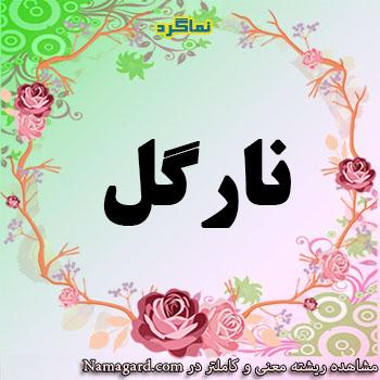 معنی اسم نارگل – معنی نارگل – نام زیبای دخترانه فارسی