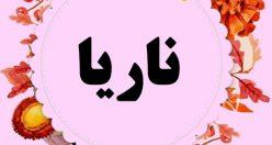 معنی اسم ناریا – معنی ناریا – نام زیبای دخترانه کردی