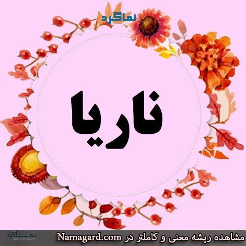 معنی اسم ناریا – معنی ناریا – نام زیبای فارسی دخترانه کردی