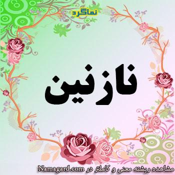 معنی اسم نازنین – معنی نازنین – نام زیبای دخترانه فارسی