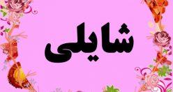 معنی اسم شایلی – معنی شایلی – نام زیبای دخترانه ترکی