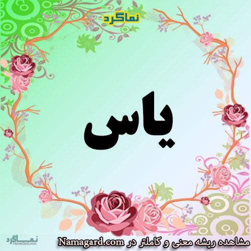 معنی اسم یاس – معنی یاسمن – نام زیبای دخترانه فارسی