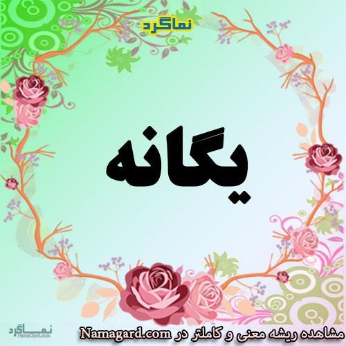 معنی اسم یگانه – معنی یگانه – نام زیبای دخترانه فارسی