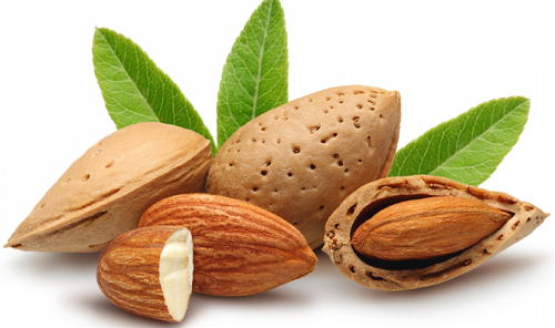 ۱۱ خاصیت بینظیر بادام درختی برای سلامتی، پوست و مو