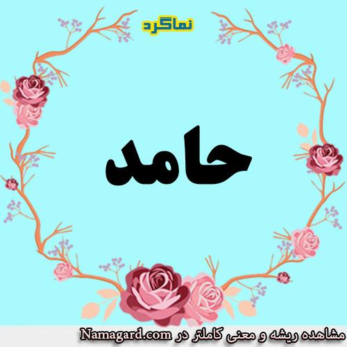 معنی اسم حامد – معنی حامد – نام زیبای پسرانه عربی