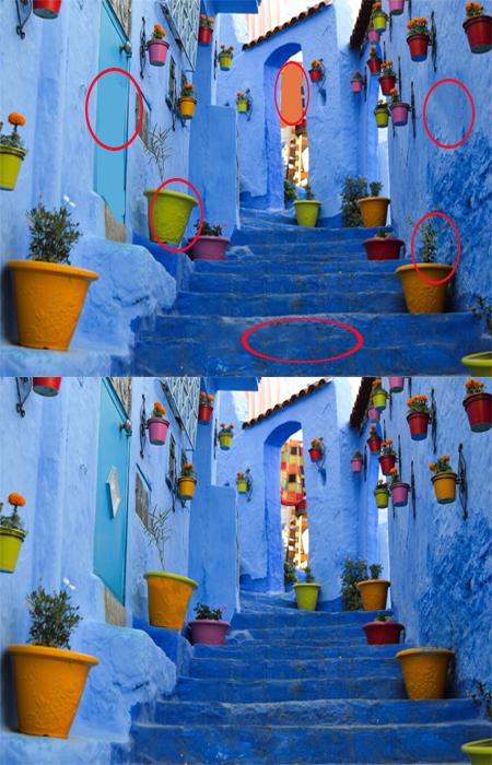 2 تست هوش اختلاف تصویری آسان ( شماره 4) - جواب تست 1
