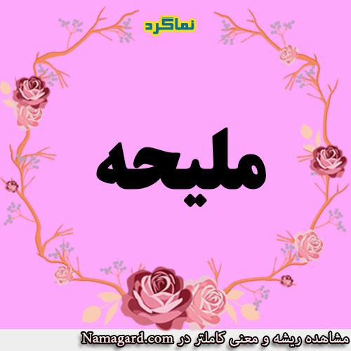 معنی اسم ملیحه – معنی ملیحه – نام زیبای دخترانه عربی