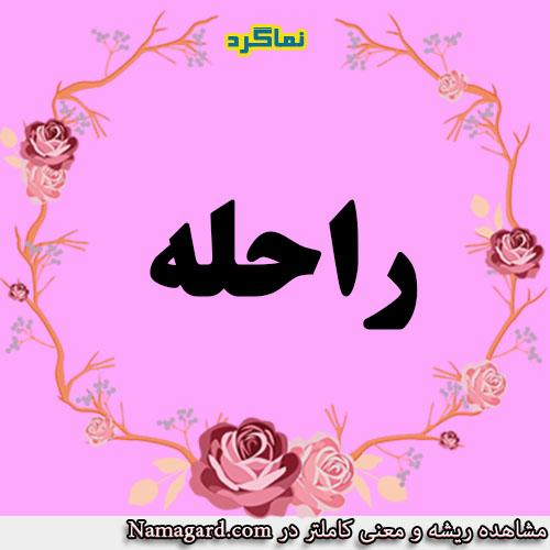 معنی اسم راحله – معنی راحله – نام زیبای دخترانه عربی