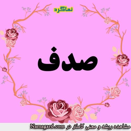 معنی اسم صدف – معنی صدف – نام زیبای دخترانه عربی