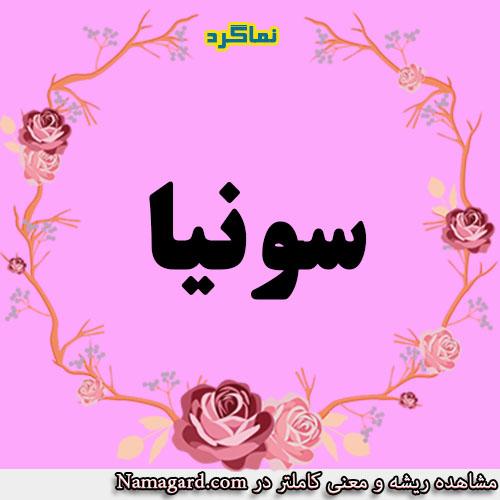 معنی اسم سونیا – معنی سونیا – نام زیبای دخترانه عربی