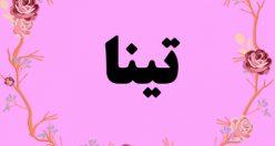 معنی اسم تینا – معنی تینا- نام زیبای دخترانه عربی
