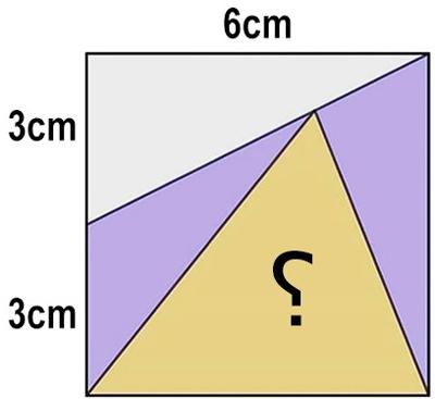 تست هوش پیدا کردن مساحت مثلث مجهول برای باهوش ها + جواب
