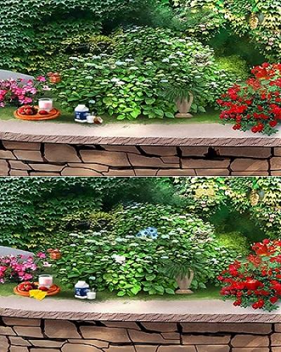 ۲ تست هوش تصویری اختلاف بین تصاویر برای تند ذهن ها(۱۸) + جواب