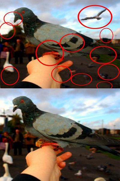 اختلاف بین تصاویر (23) - جواب تست 2