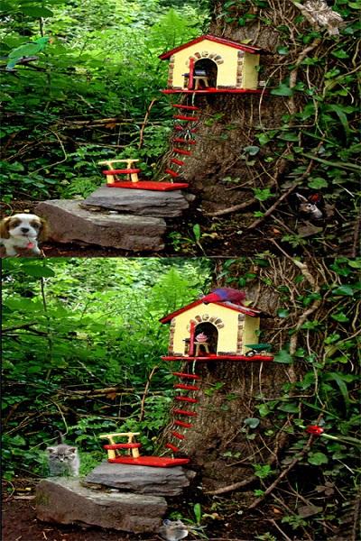 تفاوت بین تصاویر برای تیز بین ها (25) - تست 2
