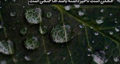 عکس نوشته های مذهبی عاشقانه + عکس پروفایل مذهبی (۵)