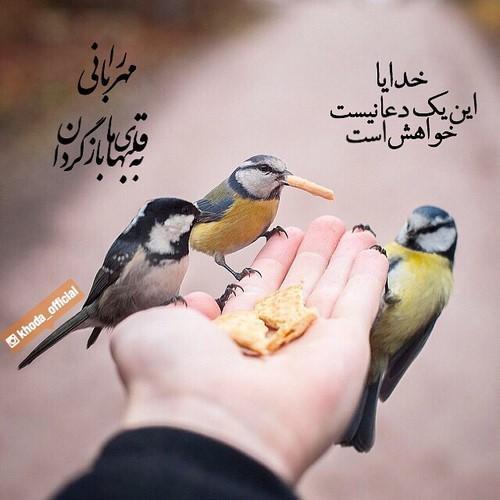 تصاویر عاشقانه+ پروفایل عاشقانه جدید