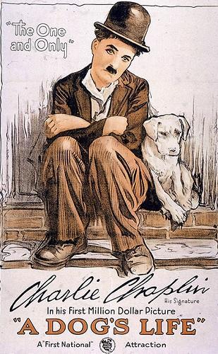دانلود رایگان فیلم فوق العاده زیبای زندگی سگی A Dogs Life 1918
