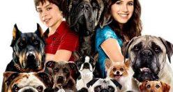 دانلود فیلم سینمایی هتلی برای سگها Hotel for Dogs 2009