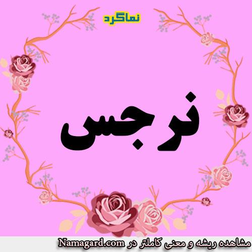 معنی اسم نرجس – معنی نرگس – نام زیبای دخترانه عربی