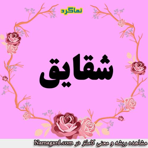 معنی اسم شقایق – معنی شقایق – نام زیبای دخترانه عربی
