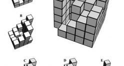 تست هوش تصویری مکعب و حدس گزینه صحیح جالب (۰۲) + جواب