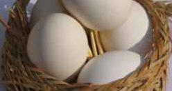 معمای سخت سبد تخم مرغ برای افراد باهوش + جواب