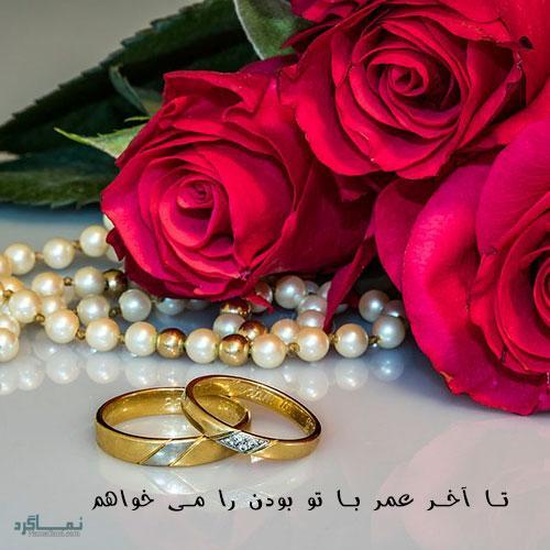 گل زیبای عاشقانه جذاب