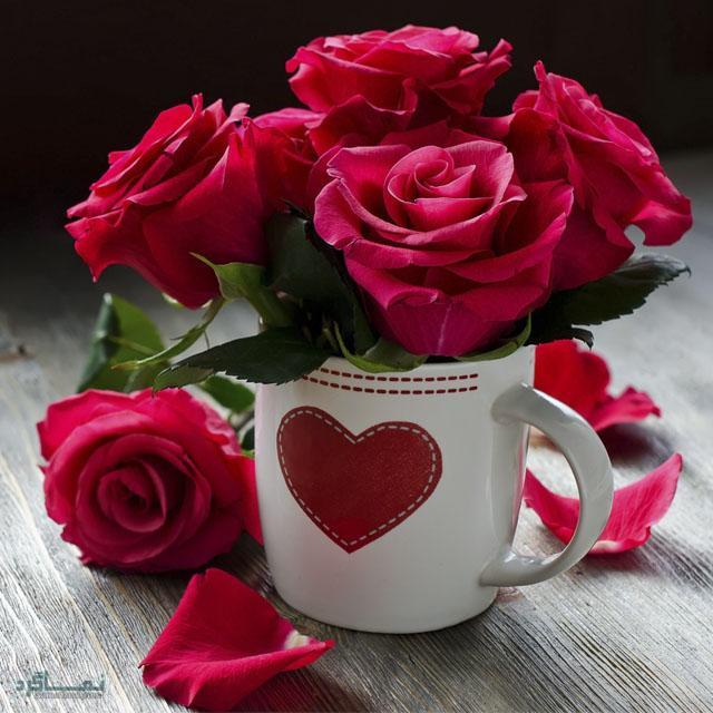گلهای شیک و خاص جذاب