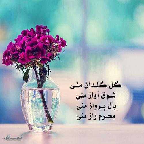 گل زیبای عاشقانه خاص