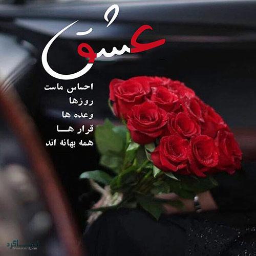 عکس گل زیبا عاشقانه