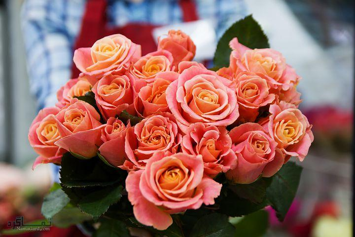 عکس پروفایل گلهای متفاوت