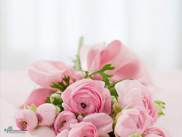 عکس پروفایل گلهای شیک