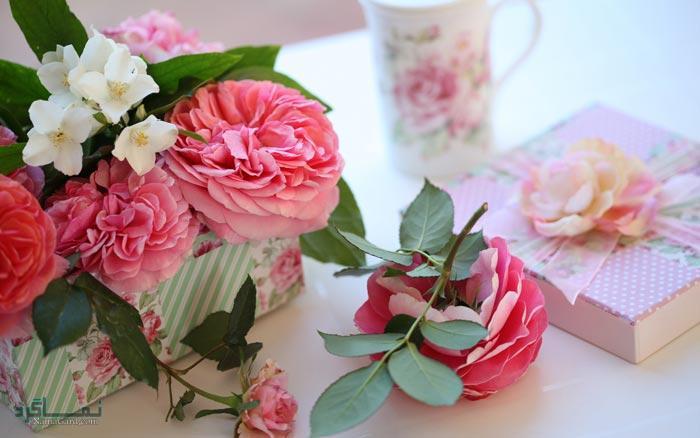 عکس گلهای رز زیبا