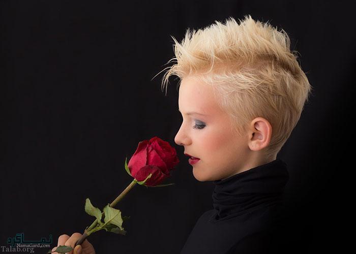 عکس گل نرگس زیبا