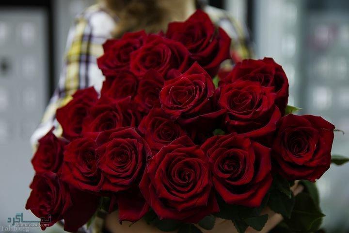 عکس های گلهای زیبا