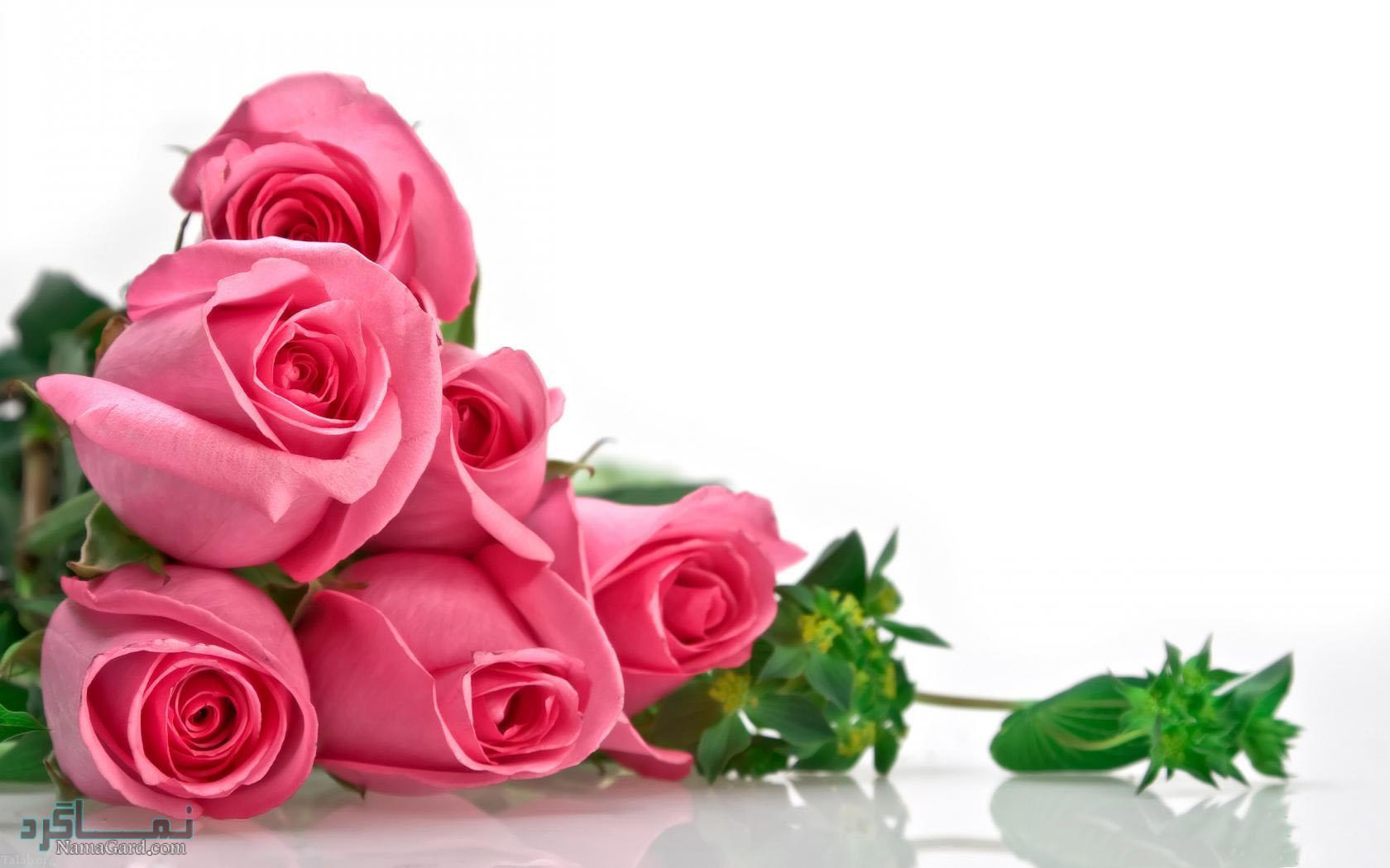عکس پروفایل گلهای خاص