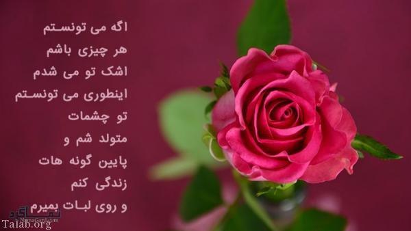 عکس پروفایل گل عاشقانه جدید