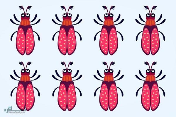 15 تست هوش بینایی سوسک های رنگارنگ (12) - تست 2