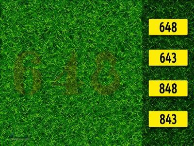 5 تست هوش بینایی برای باهوش ها!!! (08) - تست 1