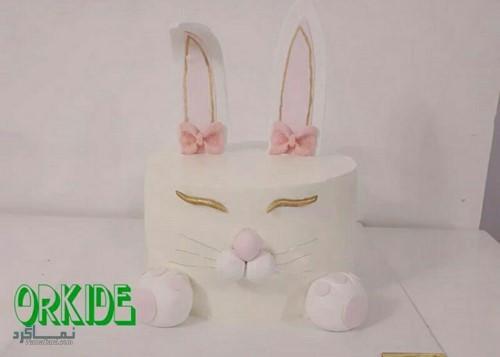 عکس های کیک تولد پسرانه زیبا