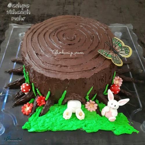 عکس های کیک تولد شاخباکلاس