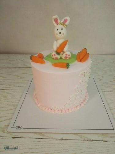عکس های کیک تولد دخترانه باکلاس