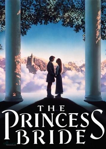 دانلود دوبله فارسی فیلم سینمایی The Princess Bride 1987